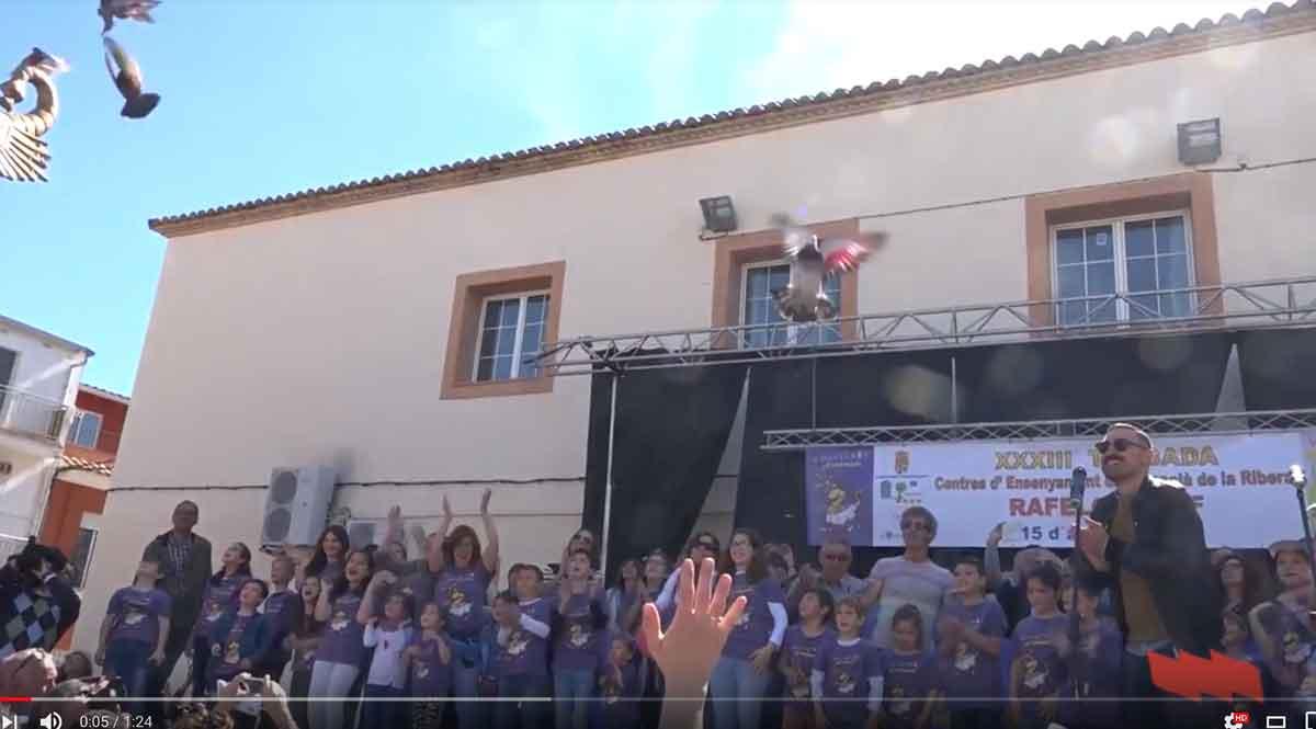 STEPV participa en la Trobada d'Escoles en Valencià de la Ribera